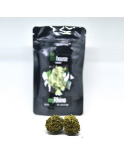 MJHouse Mj Rhino Cannabis Light Legale