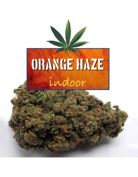 CBDWORLD Orange Haze 5g