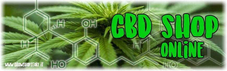 Cbd Shop Online growshopstore.it