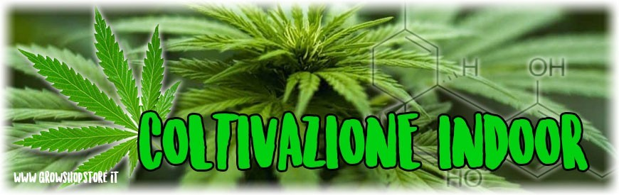 Coltivazione Indoor growshopstore.it