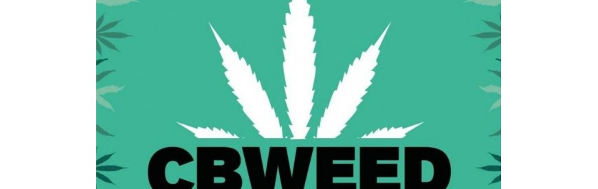 Cbweed Marijuana Legal Growshopstore.it