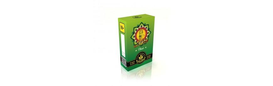 MARIA SALVADOR Cannabis Light Legale